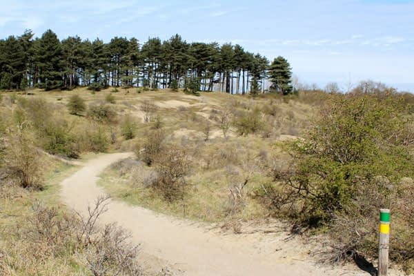 Kennemerduinen trail hiking the Netherlands